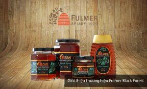 mat-ong-fulmer-black-forest